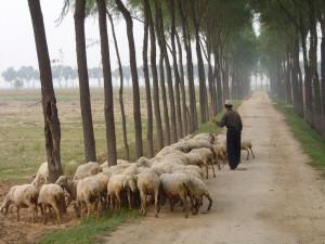 Xinjiang, Sep 2003