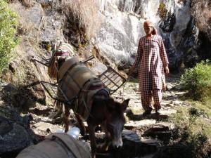 Dharamsala, Nov 2003
